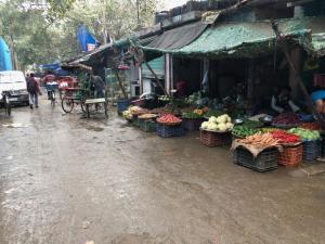 CCI Market